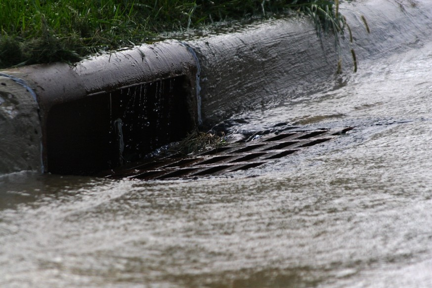 Most storm drains - and everything carried by the water entering them - go directly to nearby streams. In older cities they may pipe stormwater to treatment facilities, but this opens up a number of other problems. Best bet is to only let rain in the drain!